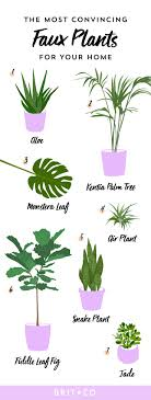 Pick These Artificial Plants for Fauxliage That Doesn't Look So Faux