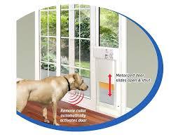 high tech pet door astonish power fully automatic doors home interior 3 high tech