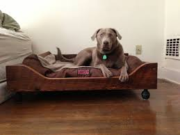 fancy dog beds furniture. Dog Bed Furniture For Cozy Sleep Design: \u003e Pets Beds | CustomMade Fancy