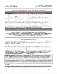 Example Vice President Resume For An Executive Candidate