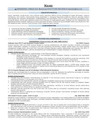 Executive Resume Samples Prime Leadership Examples For College