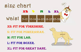 Dog Diaper Size Chart Cutebone Dog Diapers Female Puppy Pants Washable For Doggie In Heat Incontinence