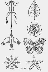 Симметрия в природе и на практике Гипермаркет знаний Симметрия в природе