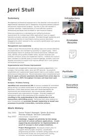 Senior Project Manager Resume Samples Visualcv Resume Samples Database