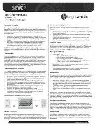 executive summary summary on resume example executive summary 17 best executive summary infographics images