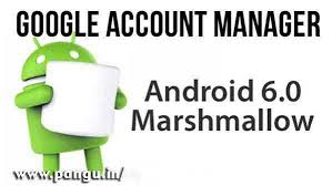 Google Account Manager Marshmallow APK 6.0, 6.0.1 API 23 - Pangu.in