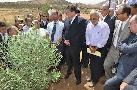 Résultats de recherche d'images pour «أخنوش يجتمع مع المهنيينأخبار المغرب»