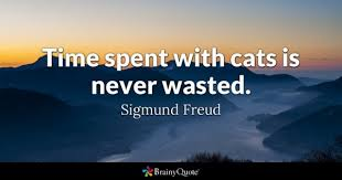 Dog Best Friend Quotes Magnificent Cats Quotes BrainyQuote