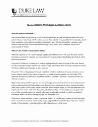 Resume Examples For A Lawyer Luxury Gallery Lawyer Resume Template