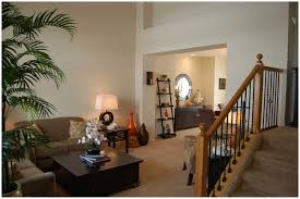 Living Room  Decoration Beautiful Earth Paint Colors For Small - Livingroom paint color