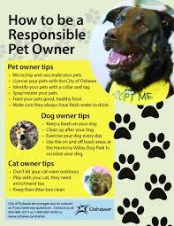 Pet Poster Pet Owner Responsibilities City Of Oshawa 7
