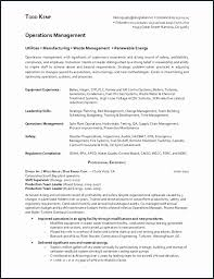 Usajobs Resume Tips Federal Government Resume Builder Federal Resume Sample And Usa Jobs
