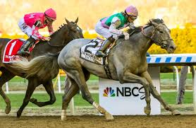 2013 Belmont Stakes Results Chart Belmont Stakes 2019 Early Odds And Analysis
