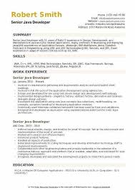 Senior Java Developer Resume Sample Topgamers Xyz