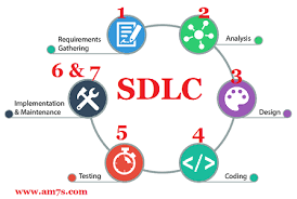 What Is Sdlc What Are 7 Stages Of System Development Life Cycle Am7s