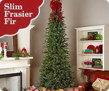bethlehem lighting christmas trees. Bethlehem Lights Indoor Ready Shape Pre-lit Slim Frasier Fir Tree Lighting Christmas Trees H
