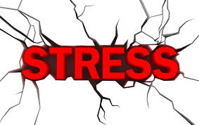 short essay on stress