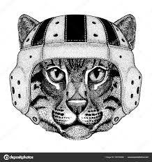 Cool Zvíře Nosit Rugby Helma Extrémní Sport Hry Kočka Divoká Kočka
