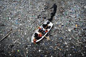 sample essay on environmental pollution in