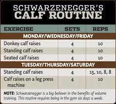 Arnold Gym Workout Chart Arnold Schwarzenegger Calf Routine Calf Exercises Arnold