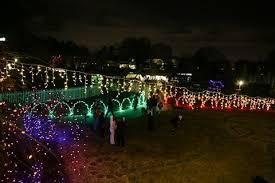 3 Borderline Genius Ways To Use Rope Light In Your Backyard Christmas Lights In Backyard
