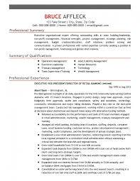 Profit Professional Resume Non Internship S Sevte
