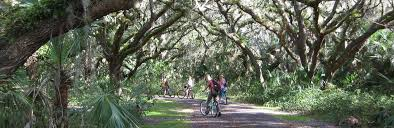 Image result for red bug slough preserve pictures