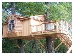 treehouse furniture ideas. Tree Houses Plans Why We Live In Trees Artificial Plants And Indoor Treehouse Rope Bucket Pictures Furniture Ideas
