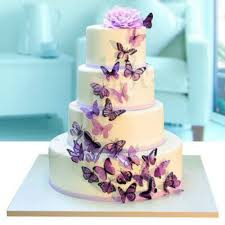 Fourlayer Butterfly Wedding Cake 8 Kg Floor Fondant Butterfly Cake