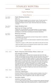 Digital Marketing Internship Resume samples
