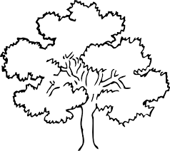 Small Picture Tree Coloring Page Coloring Lab