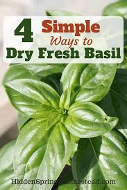 Fresh Basil To Dried Basil Conversion Chart Browse Oatssogood Images And Ideas On Pinterest