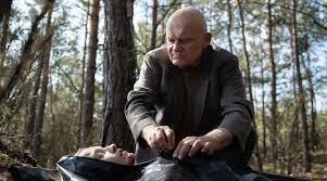 Bosque adentro - Crítica - Serie de Netflix - CINEMAGAVIA