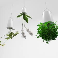 plants in upside down hanging pots 3d model max fbx mat ...