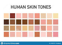 Skin Tone Palette Art Q House Pl