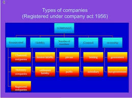 Chart Showing Different Types Of Companies