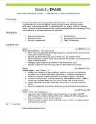 Good Resume Summary Examples Download Good Summary For A Resume Good ...
