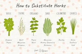 Out Of An Ingredient Use These Herb Substitutions