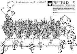 Kleurwedstrijd Kleurplaat Download Pietbuxus