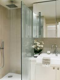 Open Showers Amazing Pros And Cons Of Having A Walkin Shower With