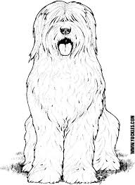 Small Picture Goldendoodle Puppy Coloring Pages Coloring Pages