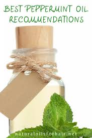 30 plus peppermint oil uses for hair
