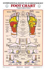 Foot Chart Foot Reflexology Chart Foot Reflexology Reflexology Foot