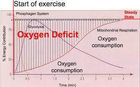 Oxygen Consumption Chart Oxygen Deficit Epoc Lactate Threshold