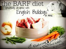 The Best English Bulldog Specific Barf Diet Guide Online