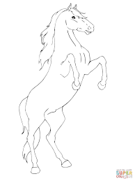 rearing horse drawing step by step. Exellent Drawing Click The Rearing Horse  Throughout Drawing Step By G