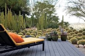 Small Picture A Waterwise Cactus Garden Photo Gallery Gallery Garden Design