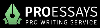 professional essay writing service net net