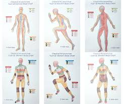 Qi Charts Classical Acupuncture Yuan Qi Body Charts Single Series