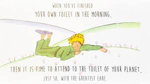 Best Little Prince Quotes